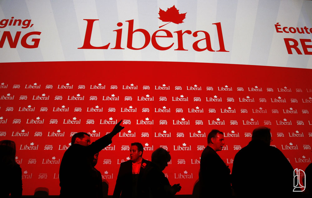 Delegates line up to vote for Liberal Party of Canada executive